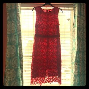 Ann Taylor Fitted Lace Dress